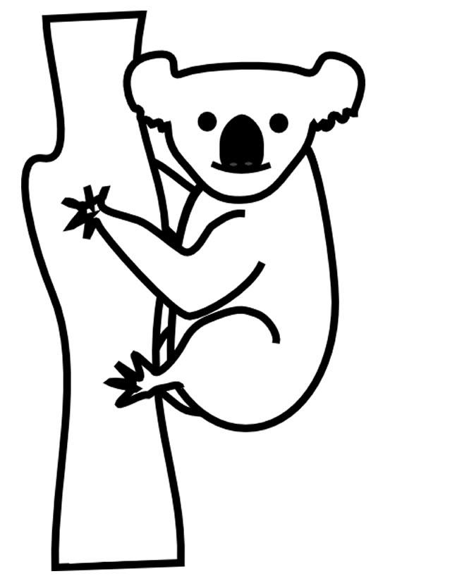 Coloriage Gratuit Koala.Coloriage Koala A Imprimer Gratuitement Az Coloriage