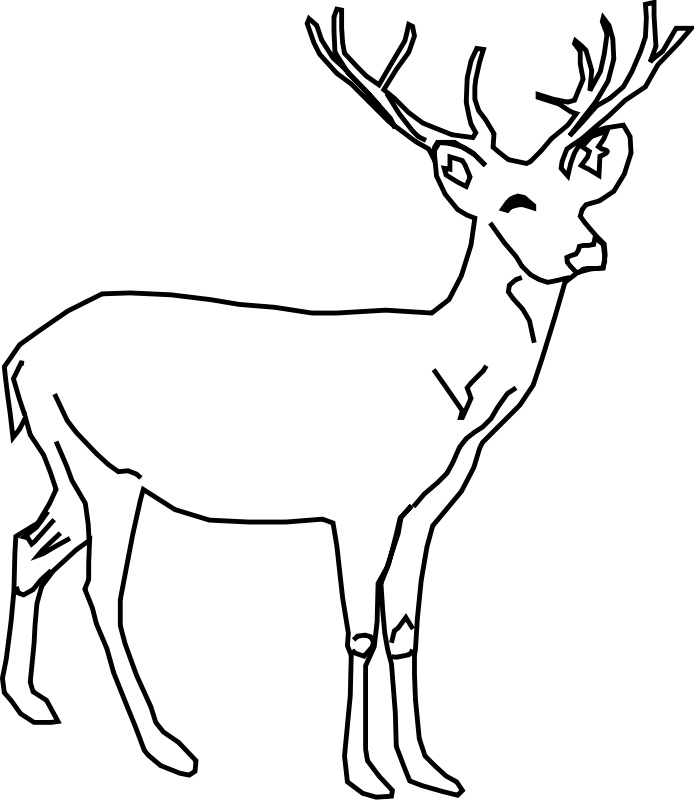 cerf Coloriage