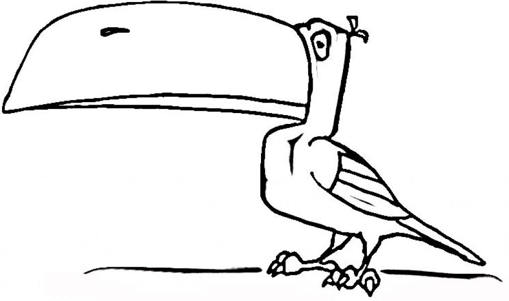 Cute Toucan Coloring Coloring Pages Toucan Coloring Page