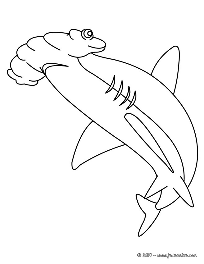 Coloriages de Requins - Coloriage d'un requin baleine