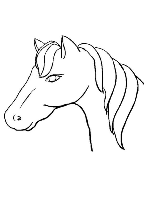 Tete de cheval coloriage my blog - Dessin tete de cheval a imprimer ...