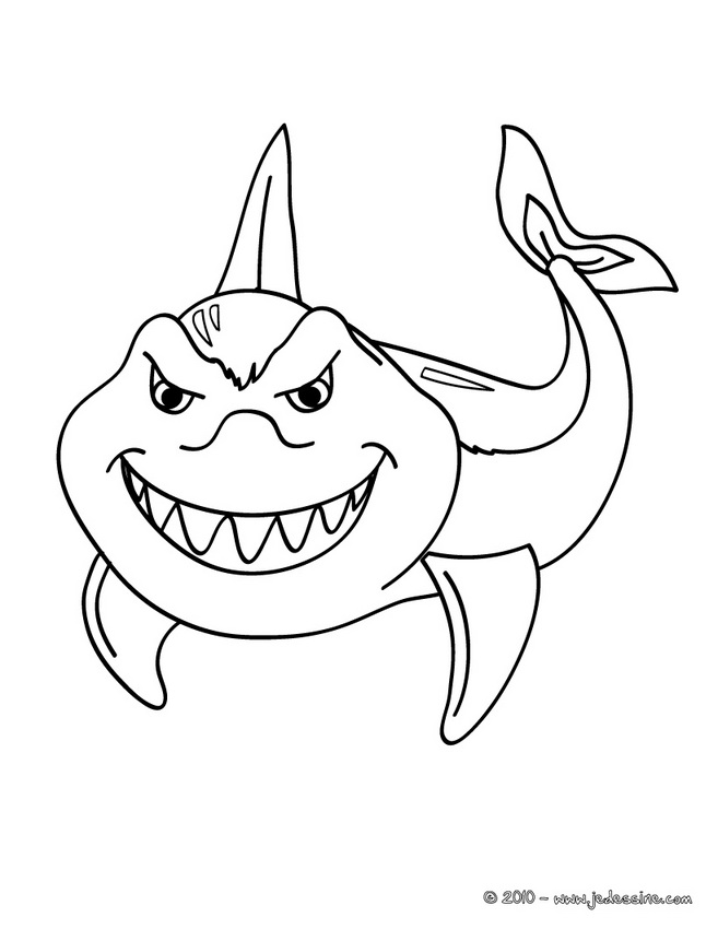 Coloriages de Requins - Coloriage de requin à imprimer