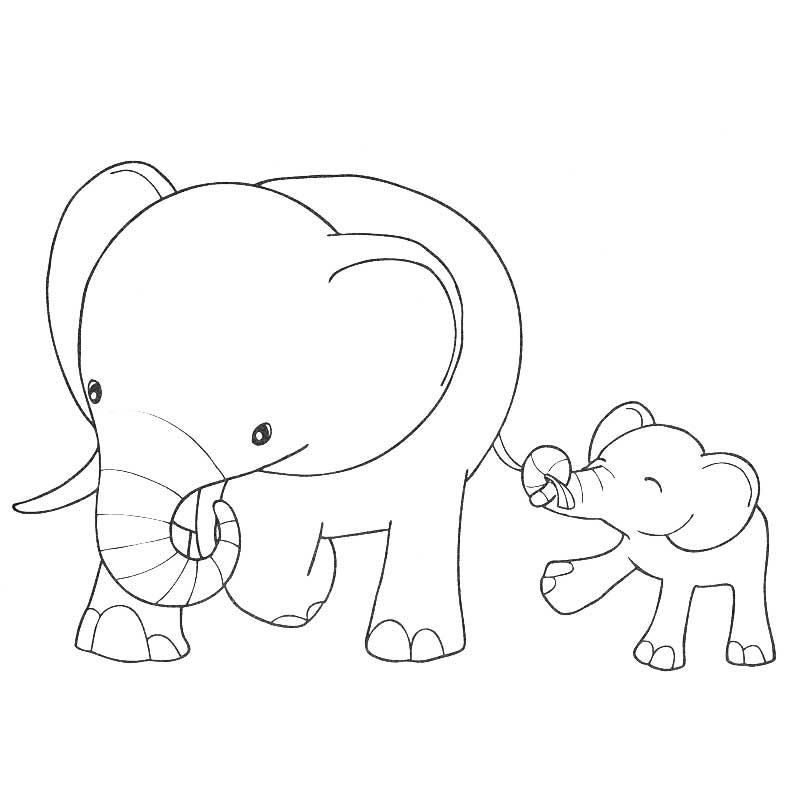 Coloring Pages Of Animals And Their Homes : Coloring pages animals and their homes free printable