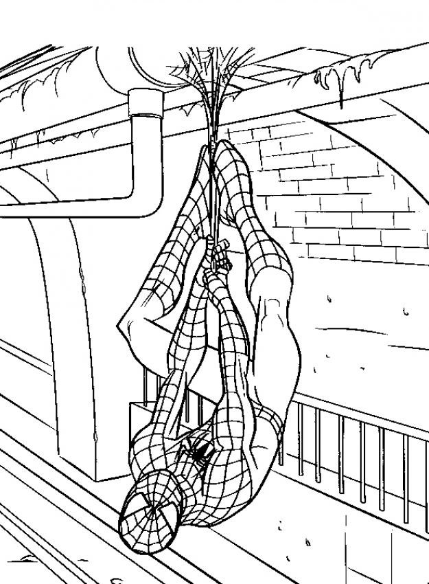 Coloriage Spiderman | 321 Coloriage