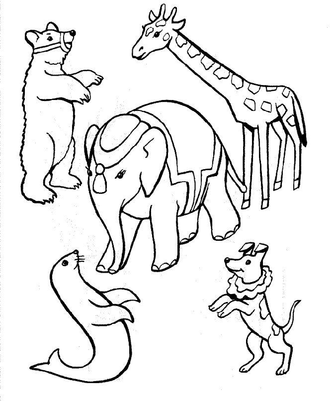 dessins d'animaux de cirques