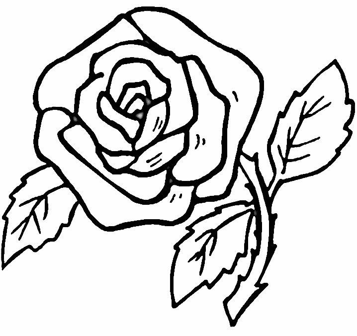 coloriage de rose - Dessin De Rose A Imprimer