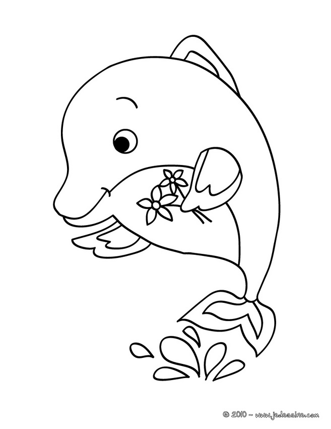Coloriages de DAUPHIN - Coloriage d'un DAUPHIN KAWAII