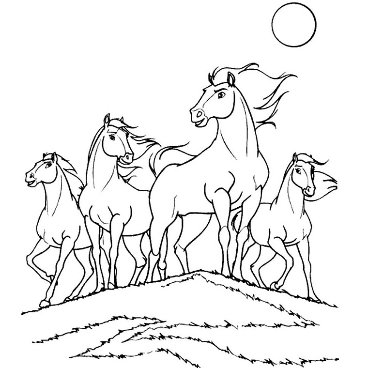 Coloriage Cheval Le Ranch.Coloriage Bella Sara Imprimer Az Coloriage