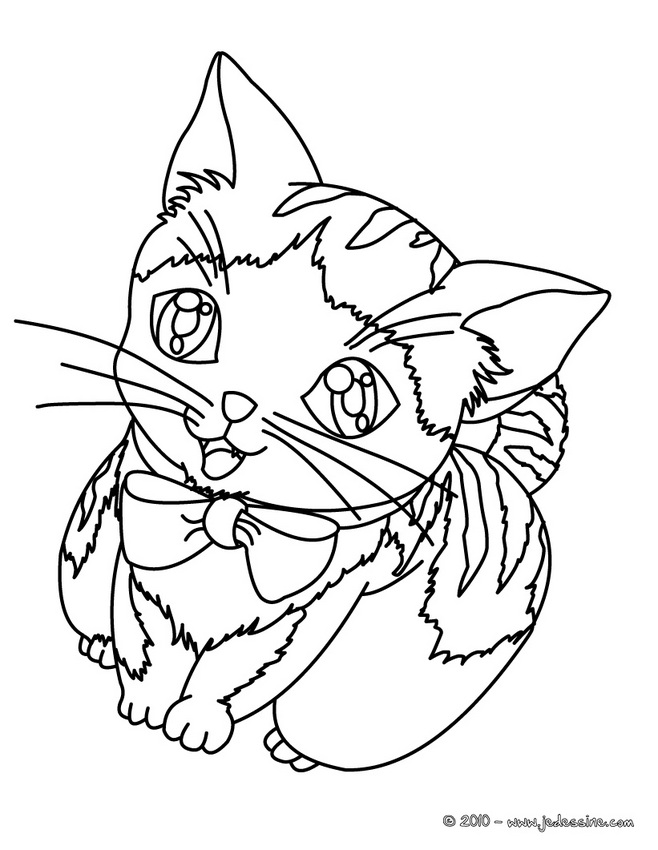 Coloriages de Chat - Drôle de chat