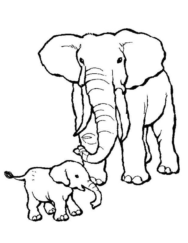 coloriage elephant Coloriage