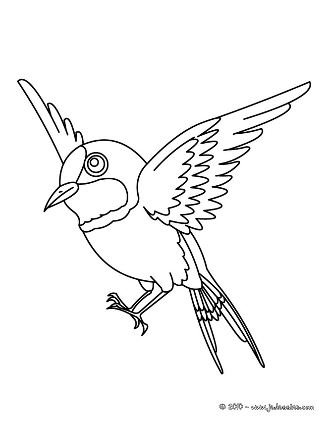 Coloring pages  Free printable coloring pictures for kids!