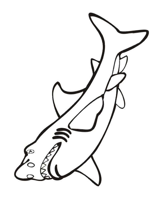 coloriage requin Coloriage
