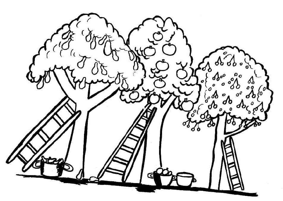 Coloriage Jardin Arbres.Coloriage Arbre Az Coloriage