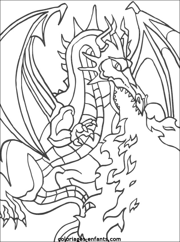 coloriages de dragons