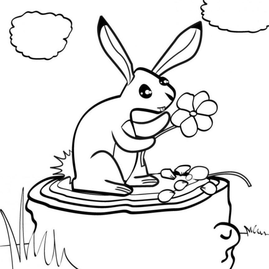 Dessin Libre coloriage lapin dessins libre de droit de lapin – 3 design