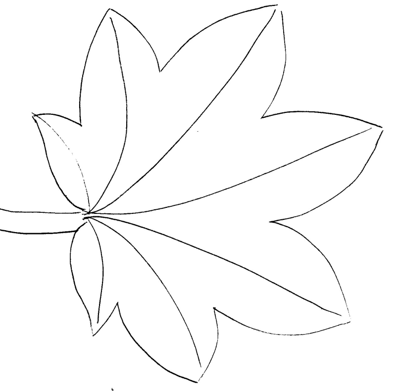 feuille chataignier Coloriage