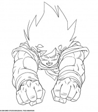 coloriage a imprimer dragon ball z-S3344
