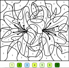 Dessin magique cycle 1 - Coloriages