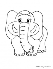Coloriages d'éléphants - Coloriage d'un ELEPHANT Kawaii