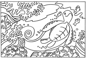 Coloriage tortue - img 18663