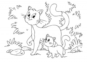 Coloriage chat et chaton - img 22643