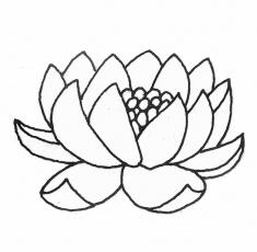 Coloriage Fleur De Nenuphar.Coloriage Fleur De Lotus Az Coloriage