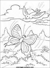 coloriages papillons Coloriage