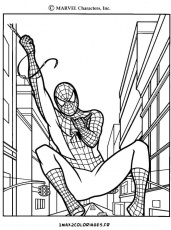 Coloriages peter parker alias spiderman a imprimer