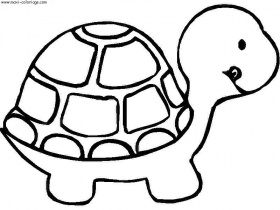 coloriage enfant tortues, dessin enfant tortues, tortues Coloriage